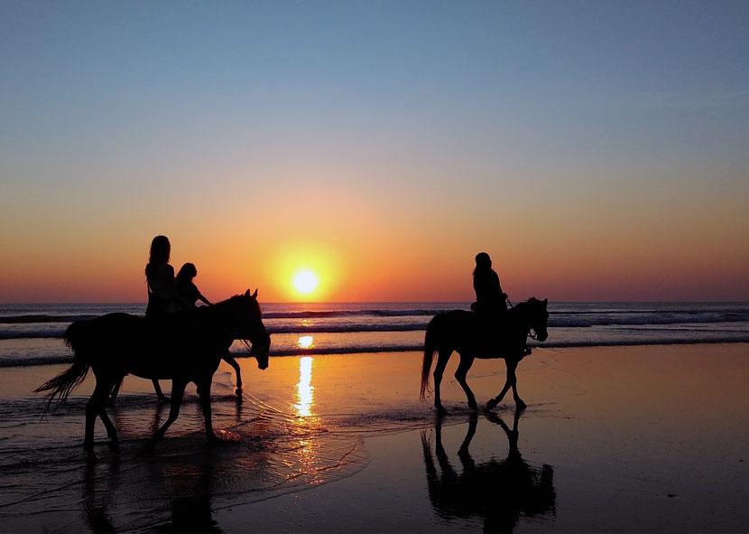 Cayucos Beach Horseback Riding